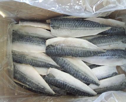塩サバフィレー